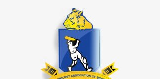 The Cricket Association Of Bengal (cab)